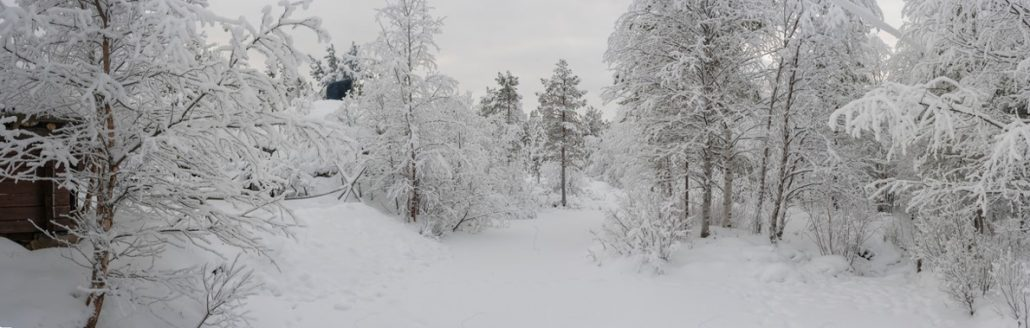 Finland Holidays - Winter
