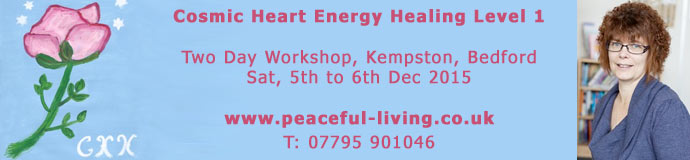 Cosmic Heart Energy Healing Level 1 (2 day workshop)