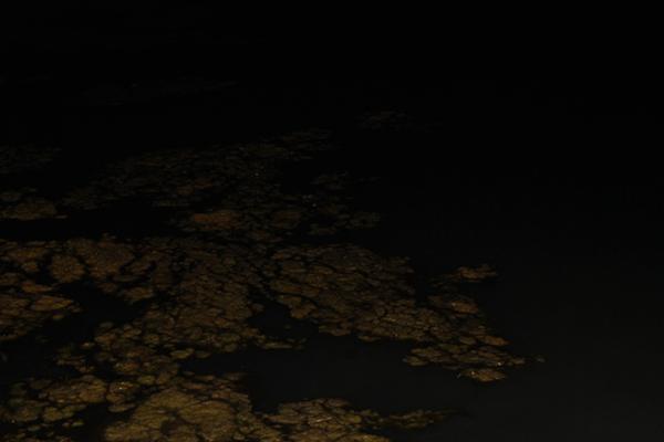 FOTO-NERA-1-crop