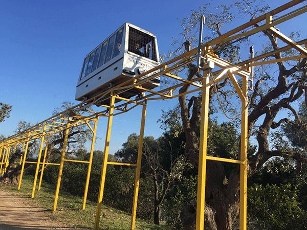 zoosafari5