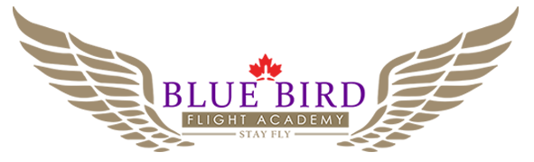Bluebird Flight Academy INC -