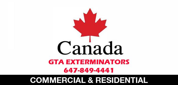 GTA EXTERMINATORS