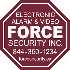 Force Security Inc