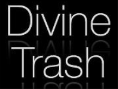 Divine Trash Clothing Logo