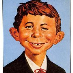 profile image of Fred Neuman