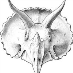 profile image of Idd Fossils