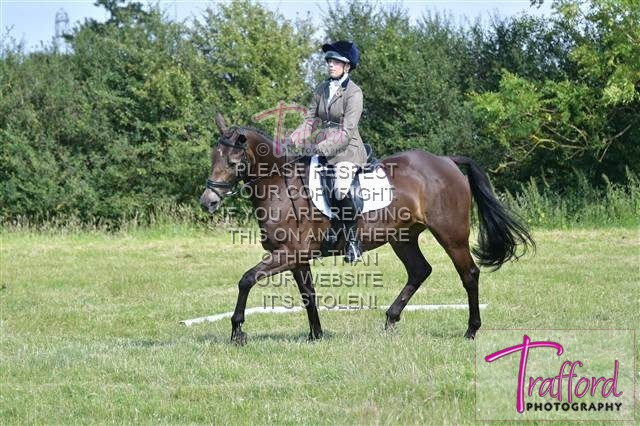 Quorn Area 6 Dressage 8 July 2017