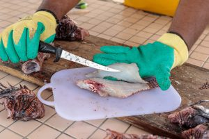 lionfish chopping