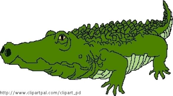 Amazoncom Nile Crocodile Toys amp Games
