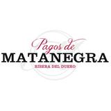 Pagos de Matanegra (Burgos)