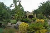 Vista Bodegas Enrique Mendoza