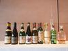 Los vinos catados