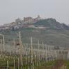 Vinos piamonte cata vinos italianos enoturismo italia thumb