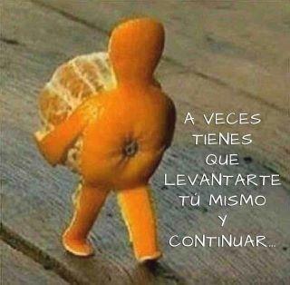 La vida de una Naranja...