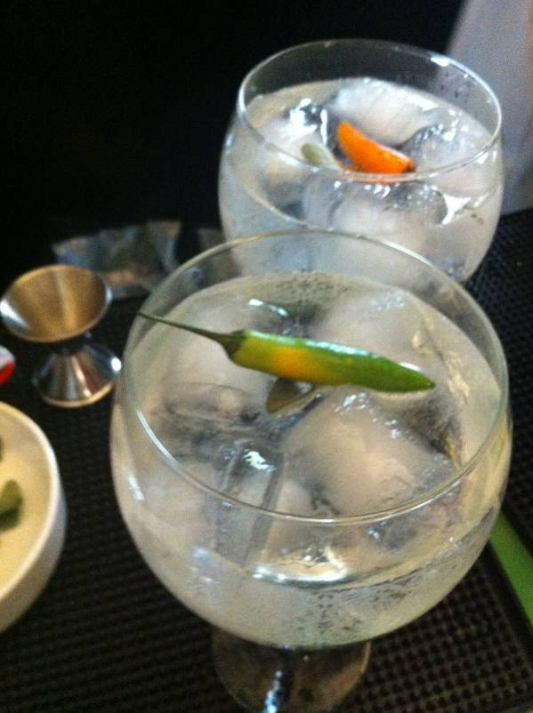 gin tonic perfecto