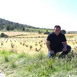 Vino mediterrano vino atlantico col