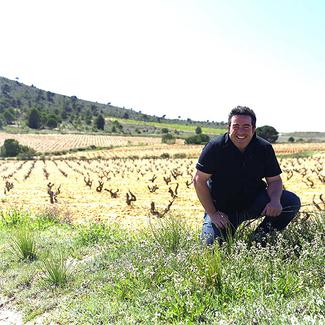 Vino mediterrano vino atlantico logo