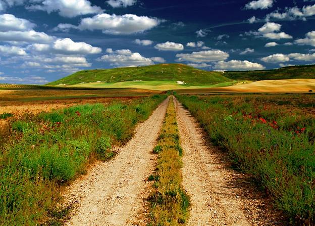El camino. Camino%20Sendero%20de%20la%20Morera%20y%20de%20los%20Valles