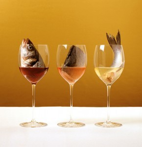 Maridaje vinos pescado logo
