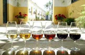 Copas vino de jerez logo