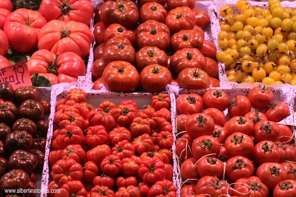 Diferentes clases de tomates