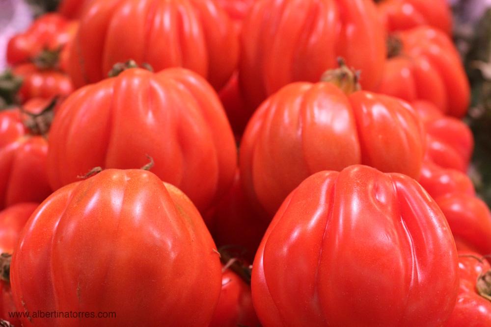 variedad tomate