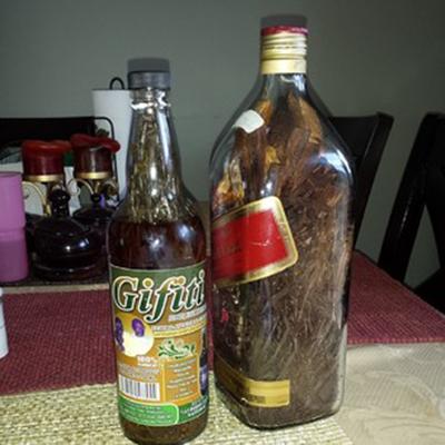 Gifiti, bebida tradicional de Honduras