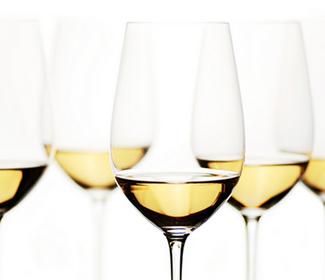 Vino blanco astringencia taninos logo
