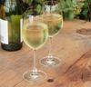 Vinos blancos espanoles basicos thumb