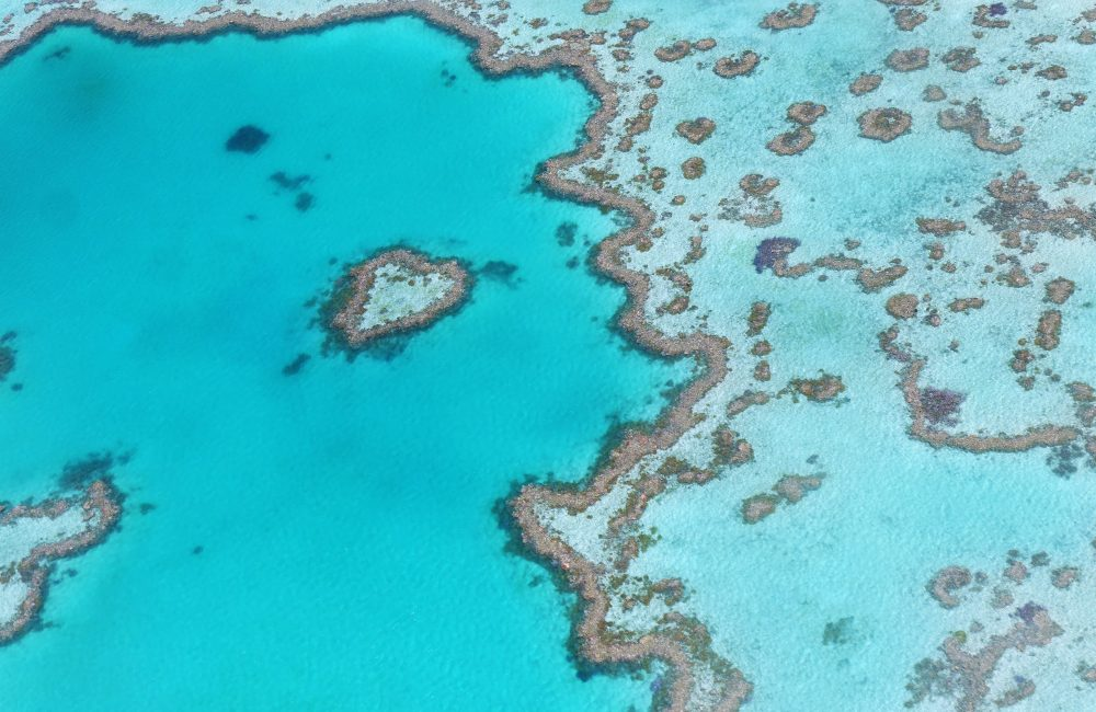 The Great Barrier Reef, Australia - Oceania Incentive Trips