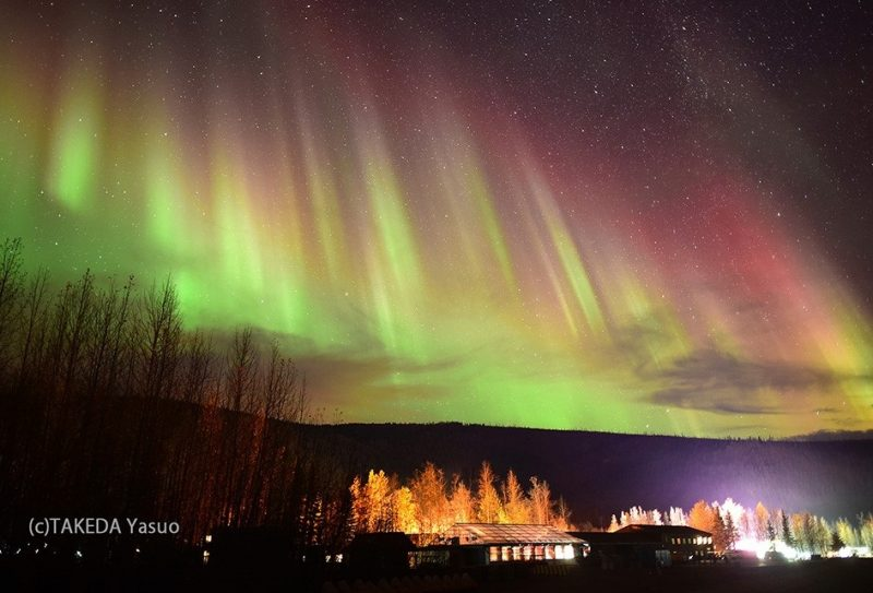 Spectacular Dancing Northern Lights by Takeda Yasuo