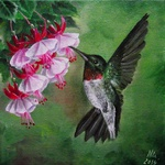 kolibrik 0