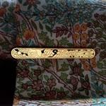 kravatova-spona-s-motivem-svatoplukovych-prutu 1