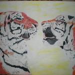 tygřici 0