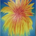 Ohňostroj-květů 0