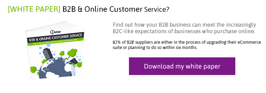 Download the B2B Online Customer Service white paper