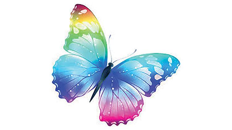 Butterfly 760x420
