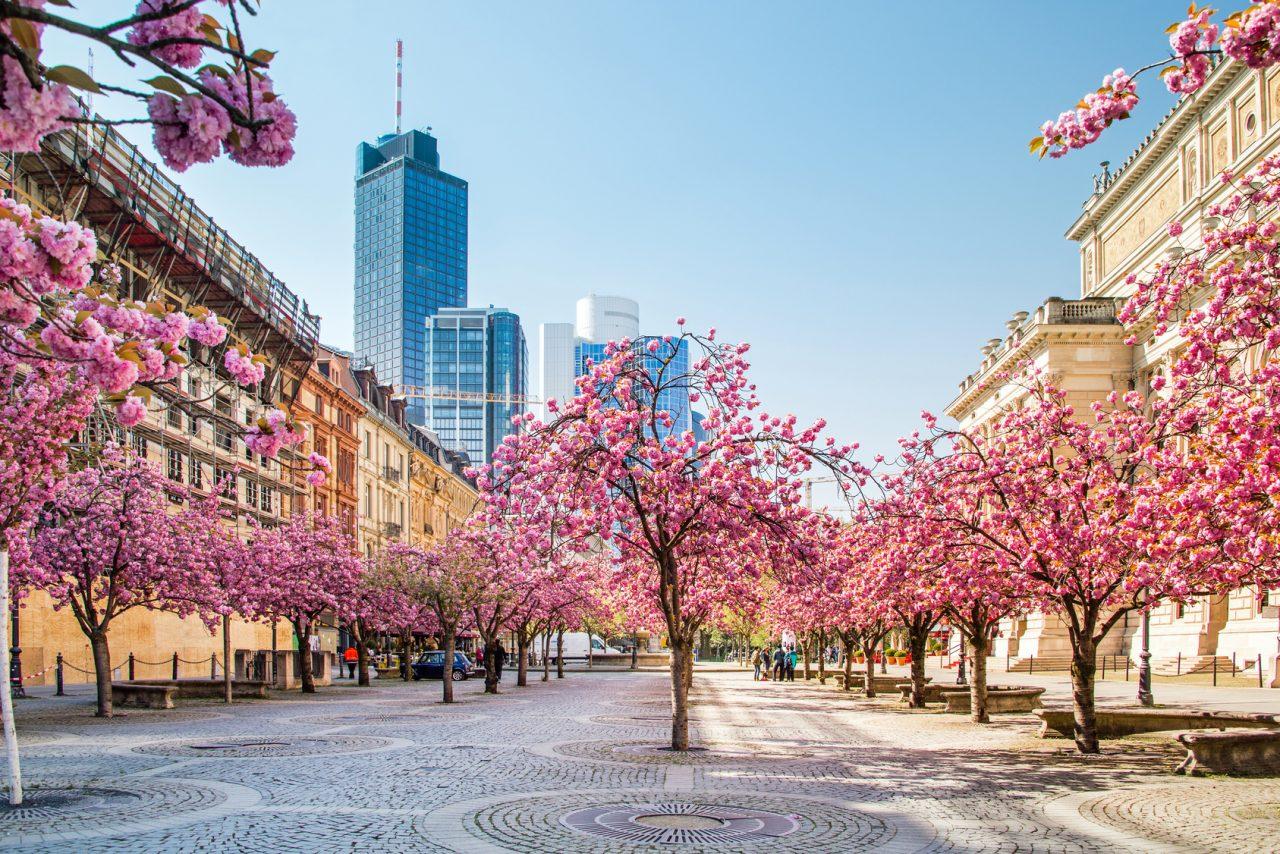 Доходная недвижимость в центре Франкфурта от 131'000 Евро