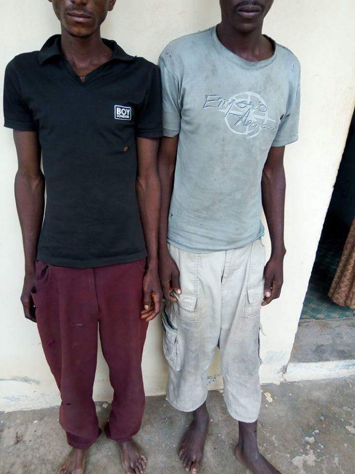 Bauchi man cut the head of his son for sale