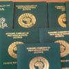 Nigerian Visa