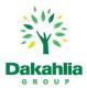 Dakahlia Group埃及的工作和职业