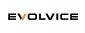 Evolvice GmbH-Freelance PHP / Wordpress Developer