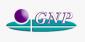 Global Napi Pharmaceuticals的项目工程师