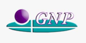 全球纳皮制药徽标