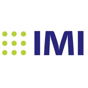 IMI徽标