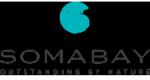 埃及索马贝的工作和职业