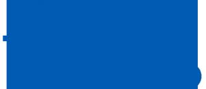 D. GmbH徽标