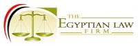 埃及律师事务所的工作和职业