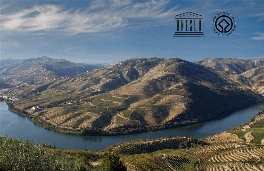 Les vignobles de la région Alto Douro