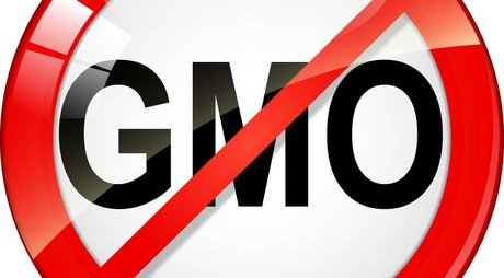 Do-you-know-what-genetically-modified-foods-are-on-your-plate